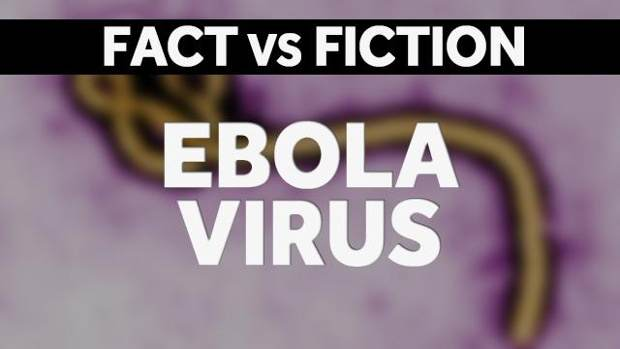 What+is+the+truth+on+the+Ebola+virus%3F