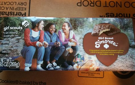 Girl Scouts Facing Boycott on Cookies