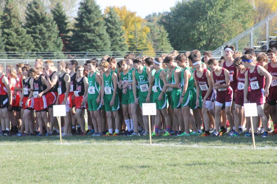 Runners line up at the starting line.