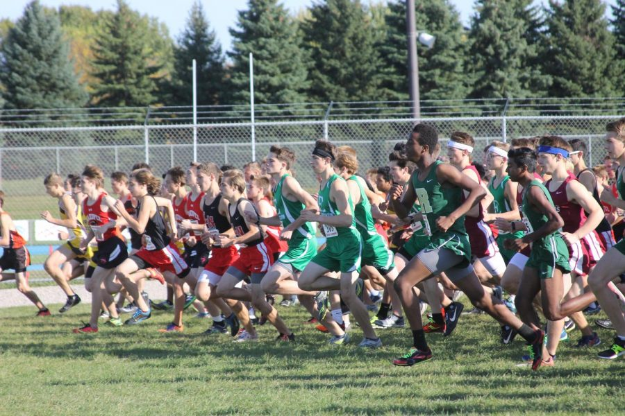 Eagan+Cross+Country+takes+on+Sections